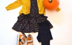 day-542-the-pumpkins-shades-1.jpg